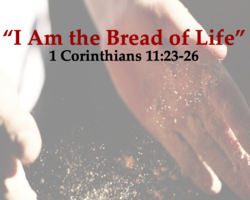 Worship Materials for Sunday, August 2nd